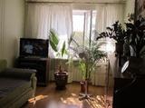 1 комнатная квартира, 36 кв.м., 2 из 2 эт.